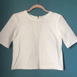 Theory crop top